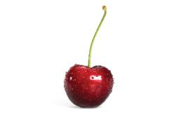 owoc_03