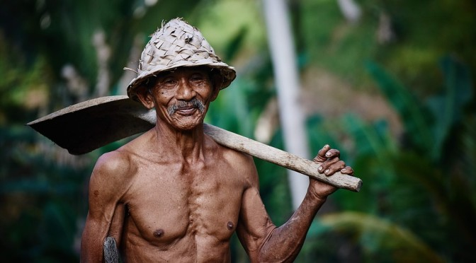 okinawa_dieta długowieczności_dieta niskokaloryczna